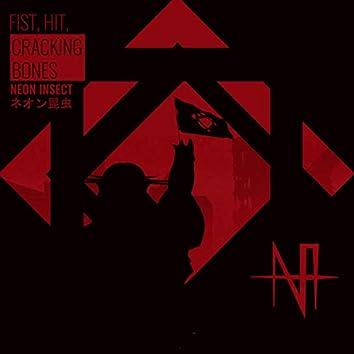 Fist, Hit, Cracking Bones
