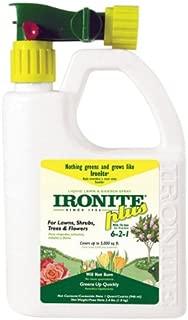 Best ironite plus spray Reviews