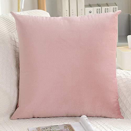 Hoofdkussen Solid Color bankhoofdkussen Velvet Taille Kussen Office Kussen for Sofa Bedroom Car (Kleur: lichtroze, Maat: 60x60cm)