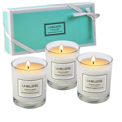 Vela perfumada La Bellefée, paquete de regalo, vela votiva de cera de soja, perfecta para aniversario, cumpleaños, yoga, Navidad, madre, padre, día de San Valentín, 3 paquetes