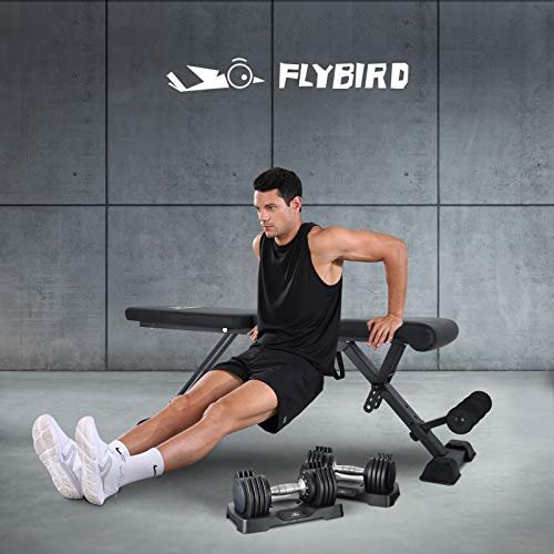 FLYBIRD Adjustable Weight bench, Foldale Workout Bench Incline Bench for Home Gym Strength Training - Waist Pad Version