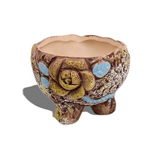 Diyomr - Macetas de cactus (3D, pintadas a mano, con diseño de flores, floreciente, no incluye plantas (rosa amarilla)