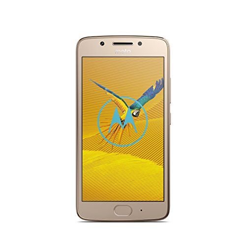 moto g5 Smartphone (12,7 cm (5 Zoll), 2 GB RAM/16 GB, Android) Fine Gold
