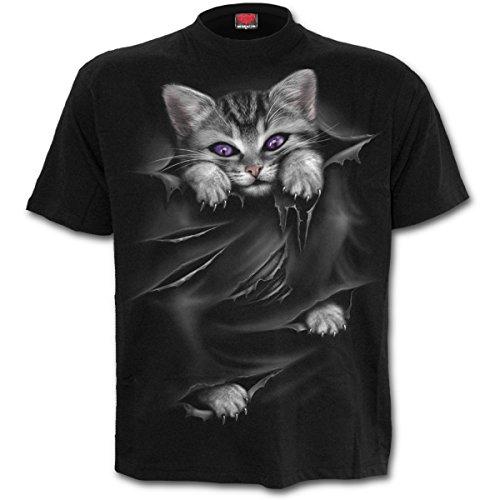 Spiral Damen Bright Eyes-Front Print T-Shirt, Schwarz (Black 001), 34 (Herstellergröße: Small)