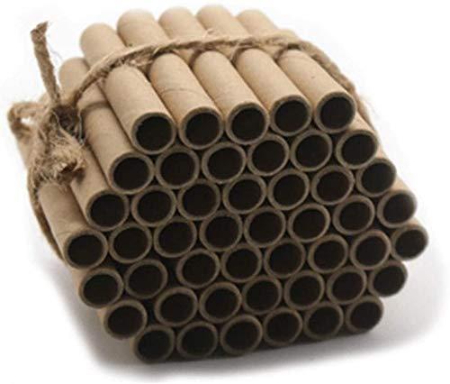 Super Idee 100er Set Insektenhotel füllung Pappröhrchen Füllmaterial 60mm Länge Umweltfreundlichen Basteln aus Kraftpapier für Insektenhaus Wildbienenhotel Wildbienenhaus Bienenhotel Nisthilfen