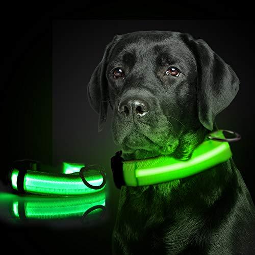 Collar de Perro de Mascota, Collar para Perro Luminoso Recargable y Impermeable,Collar de Perro de Seguridad Nocturna,Collar LED de Destello Ajustable para Perros Pequeños/Medianos