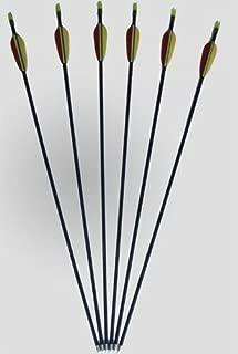 Poids 34 grammes par pi/èce Pointe M/étallique Viss/é 24 Fl/èches Longueur 30 = 79,3cm Aluminium