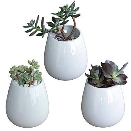 Lot de 3 pots de fleurs blancs de qualité supérieure en céramique pour plantes succulentes ou plantes - Vase mural pour fleurs séchées - Décoration d'intérieur pour salle à manger ou véranda (3 petits)