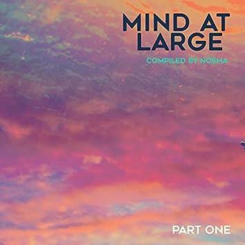 Mind at Large, Pt. I