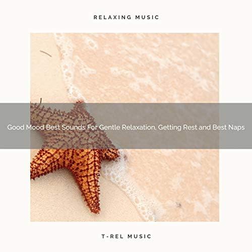 White Noise Meditation, Sleep Baby Sleep & White Noise Healing Center