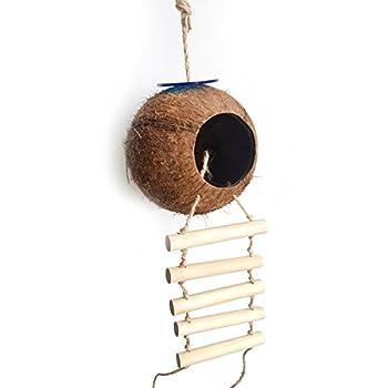 UEETEK Nid d'oiseau nid de noix de coco nid naturel coco avec échelle oiseau jouet pour perruches Perruche ondulée et petit animal de compagnie