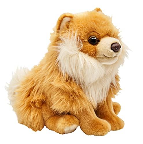 Uni-Toys - Zwergspitz, sitzend - 23 cm (Höhe) - Spitz, Plüsch-Hund - Plüschtier, Kuscheltier HT-30161 Zwergspitz Ohne Leine
