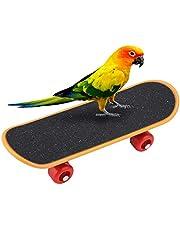 Parrot Deskorolka, 5.5 Cal Mini Deskorolka Treningowa Zabawna Inteligencja Zabawka dla Małych i Średnich Ptaków Budgie Papuga Nimfy Lovebird Conure