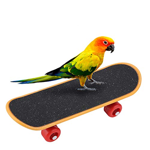 HEEPDD Papagei Skateboard Spielzeug, Vögel Porrat Stander Vogel Lustige Ausbildung Spielen Interaktives Spielzeug Nymphensittiche Bildungsstand Spielzeug für Vögel Papageien Kleine Conures
