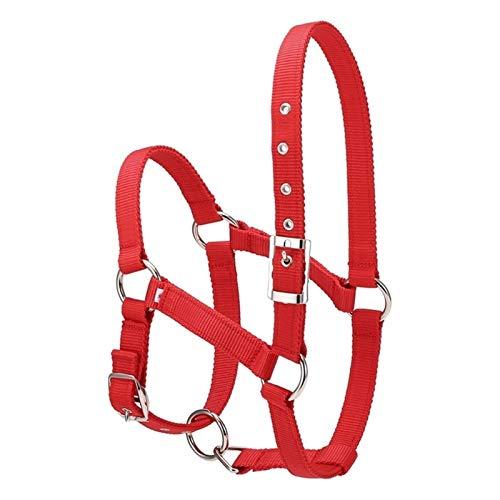 DER Cuidador de Caballos Práctico Ajustable Hípica Equipo Halter Brida Caballo con bits y Rein Cinturón de Caballo Ecuestre Accesorios Espesar Accesorios para Caballos (Color : Red)