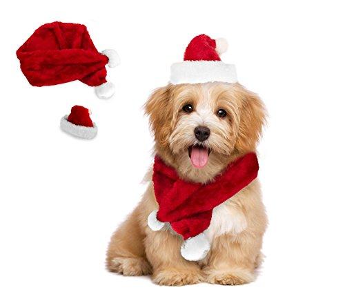 MEDIA WAVE store Set Sciarpa e Cappello Babbo Natale 064227 Ideale per Cani di Piccola Taglia