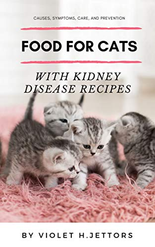 Food for Cats with Kidney Disease Recipes: Causes, Symptoms,...