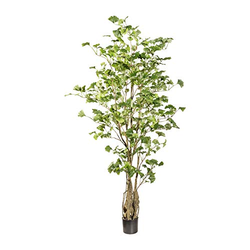 wohnfuehlidee Kunstpflanze Gingkobaum grün, im Kunststoff-Topf, Höhe ca. 155 cm