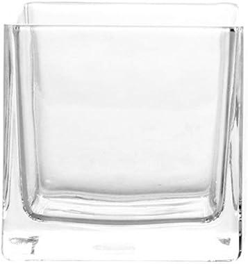 MVASE Place en Cristal Transparent Vase en Verre carré Cylindre hydroponique Usine Creative Ten Flat Potted carré Cylindre