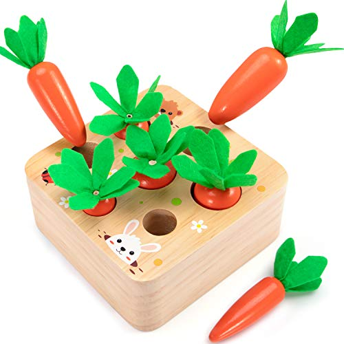 AOJOYS Montessori Toys for Toddlers 1-3 Years Old  Developmental Wooden Toys Carrot Shape Size Sorting Game  Preschool Learning Fine Motor Skill for Baby Boys Girls