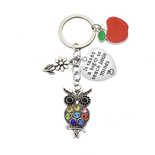 Teacher Appreciation Gift Keychain, It Takes A Big Heart to Teach Little Minds Stainless Steel Key Ring Jewelry for Teachers Thank You Gift Graduation Gift for Teacher