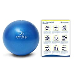 HIGH QUALITY mini exercise balance ball. The ProBody Pilates Mini Exercise ball is intended for core strength, balance, back rehabilitation and for toning and sculpting with Pilates, Yoga or other fitness exercises. INCLUDES AN INFLATION STRAW AND AC...