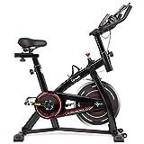 Hadwin Heimtrainer Fahrrad Indoor, Fitness Fahrrad bis 120kg mit 10 kg Schwungrad LCD-Anzeige, Magnetbremse, Pulsmesser, Flaschenhalter, Verstellbarer Lenker und Sitz