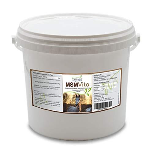 Cellavita | MSM - Organischer Schwefel - 5 kg für Pferde | pharmazeutische Qualität Schwefel pur 99,9% rein - 5 kg Eimer
