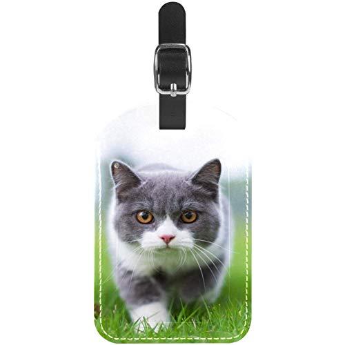 TIZORAX Gepäckanhänger, kurzhaarige Katze auf Gras, Leder, für Reisekoffer, 1 Packung