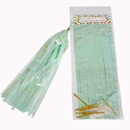 YLWL 10 Pc Paper Iridescent Tassel Garland Paper Banner For Mermaid Baptism Wedding Birthday DIY Party Hanging Decor Suppliers (Color : Mint Green)
