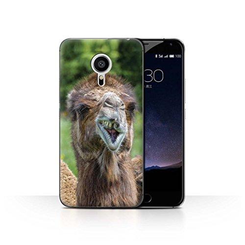 Stuff4® Hülle/Hülle für Meizu Pro 5 / Brutzelndes Kamel Muster/Lustiges Tier Meme Kollektion