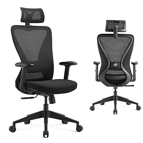 Ergolead Ergonomic Office Chair, Desk Chair High Back Computer Chair - Comfortable 2D Adjustable Lumbar Support, Adjustable Headest & Armrest, Modern Mesh Swivel Task Home Office Chair, Black