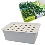 24 Holes Plant Site Hydroponic Kit Garden Pots Planters Seedling Pots Indoor Cultivation