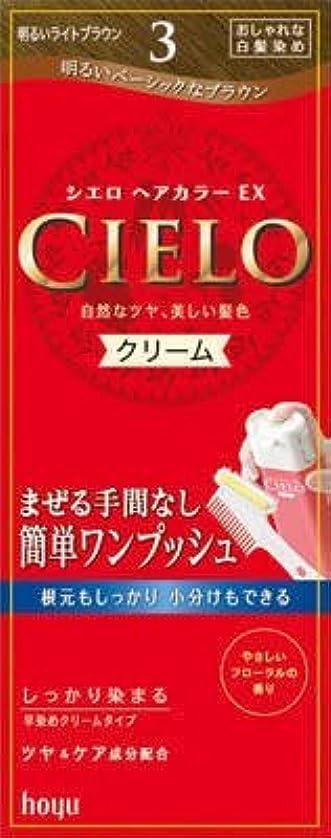 放射性博覧会復讐シエロ ヘアカラー EX クリーム 3 明るいライトブラウン × 3個セット