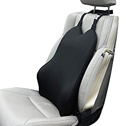Dreamer Lumbar support for the car