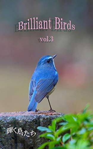 Brilliant Birds vol.3: 輝く鳥たち