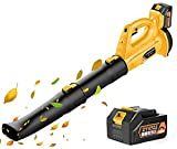 Best Cordless Leaf Blowers - Cordless Leaf Blower - 150MPH 320CFM Battery Powered Review