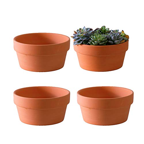 Yishang Terracotta Shallow Planters for Succulent - 7 Inch Cactus Plant Containers Indoor Garden Bonsai Pots with Drainage Hole - Set of 4, Unglazed Clay Ceramic Pottery Planter