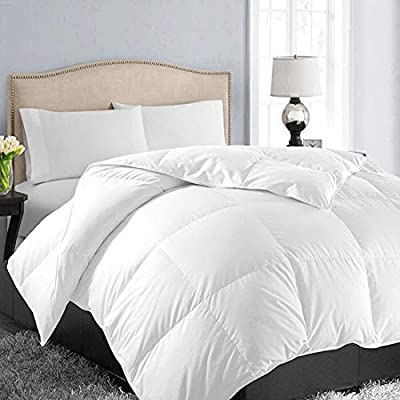 EASELAND All Season King Size Soft Quilted Down Alternative Comforter Reversible Duvet Insert with Corner Tabs,Winter Summer Warm Fluffy Hypoallergenic,White,90x102 inches
