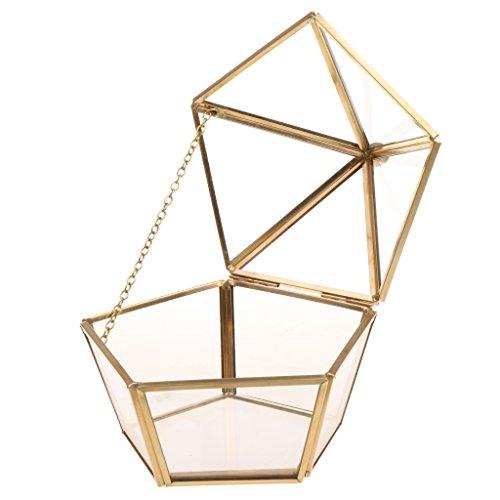 Fenteer Boîte Terrarium en Verre Transparent Maison Serre de Table pour Plante Micropaysage Bijoux Organisateur Décoration Fête - Or