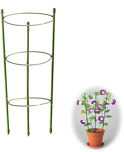 "Yojoloin 2 Pack Garden Plant Support Anello Garden Trellis Flower acciaio inossidabile Supporto arrampicata Vegtables & Flowers & Fruit Grow Gabbia con 3 anelli regolabili 17.8 ""(2PCS)"