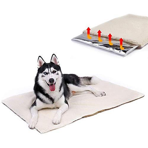 AIDIYA Hundematte waschbar, hygienisch und selbstwärmend, thermodecke Hund mit kuscheligem Plüsch für Hunde…