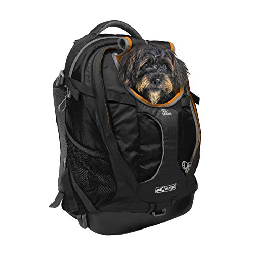 Kurgo Dog Carrier Backpack for Small Pets - Dogs & Cats | TSA Airline Approved | Cat | Hiking or Travel | Waterproof Bottom | G-Train | K9 Ruck Sack | Black (ZCR30-17136)