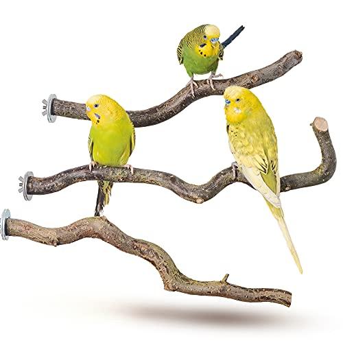 Vogelgaleria -  3 gebogene Naturholz