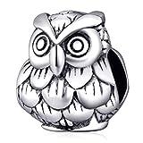 Doctor búho encanto plata de ley 925Animal de la suerte encanto pájaro mascota encanto para encanto pulsera estilo Pandora B