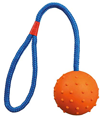 Trixie 3305 Ball am Seil, Naturgummi, ø 6/30 cm, Sortiert