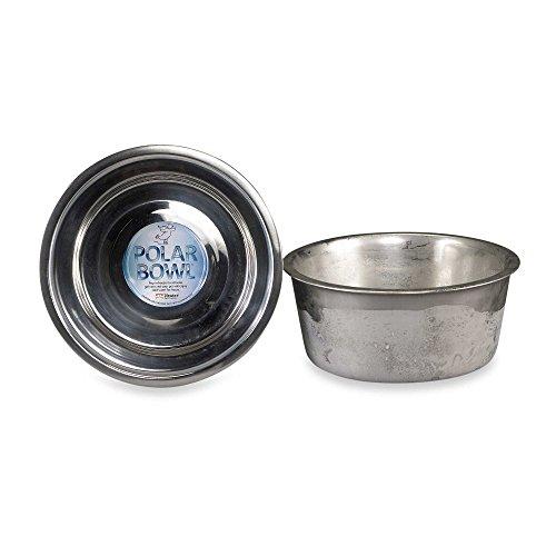 Polar Bowl by Neater Pet Brands (Medium, 3.5 Cup)