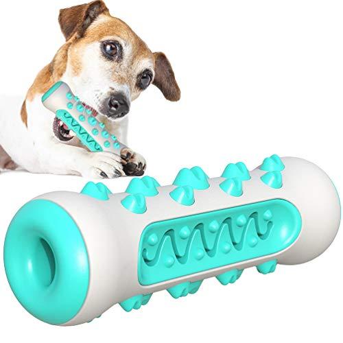 AFFINEST Kauspielzeug für Hunde Hundezahnbürste Kauen Hundespielzeug Backenzahn Interakt Welpen Zahnbürste ungiftiger Gummi-Beißschutz langlebige Zahnreinigung Blau