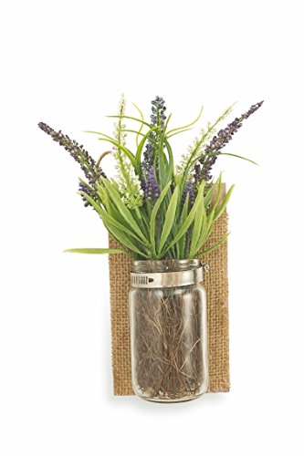 Villa d'Este Home Tivoli 2414254 Set 6 Garden Bouquet en Pot de Mur, Plastique + Verre + Bois, Multicolore, 6 unités