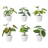 SOGUYI Plantas Artificiales 15cm Mini Plantas Artificiales de Interior con Macetas Oficina en Casa Hotel Cocina Jardín Fiesta Decoración de Plantas Decoración Moderna (Paquete de 6)